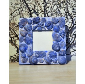 Frame in wood with shells and corals in plaster